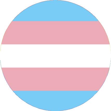 Darstellung von Trans* Menschen